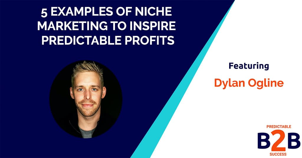 5 Examples of Niche Marketing to Inspire Predictable Profits